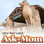 Great Wolf Lodge AAM Badge