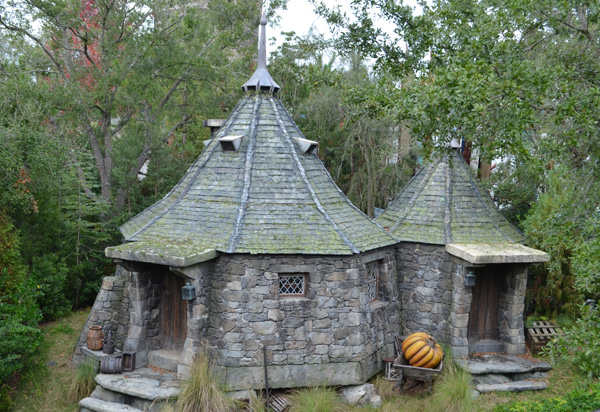 Hagrid's Hut - Flight of the Hippogriff