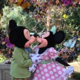 With beautiful flowers in bloom all around the park, warm days and cool nights, Springtime is in season at the Disneyland Resort.  In recent years, the resort has added extra […]