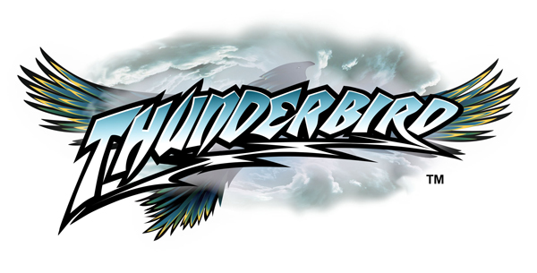 Holiday World Thunderbird