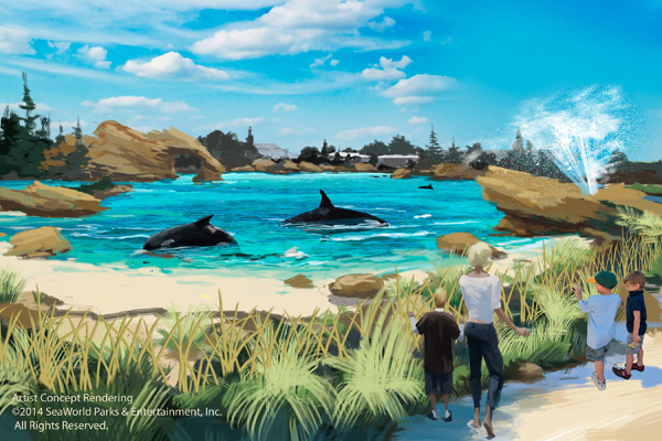 SeaWorld Killer Whale Environment