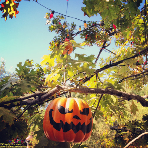 Decorated pumpkins  hung from the Halloween Tree with care.