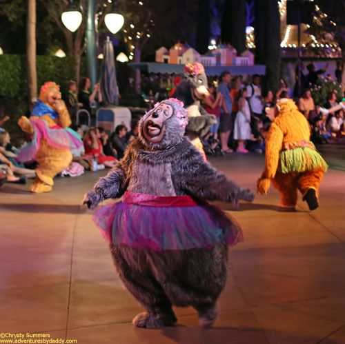 Big Al from the Country Bear Jamboree prances along in a tutu during the Character Cavalcade at Mickey's Halloween Party.  Well now, I'm just not sure if it gets any better than that.