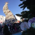 It's that time of year again at Universal Studios Hollywood – Grinchmas! We were excited to check it out since we had never been to Universal Studios Holidays. The park […]