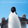 This post will contain all the official photos, trailers and news for Disneynature's PENGUINS opening April 17, 2019. Disneynature's True Life Adventure film PENGUINS takes an epic journey to Antarctica where only […]